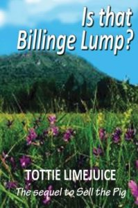 Is-That-Billinge-Lump